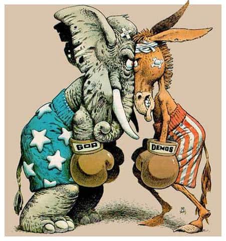 elephant-donkey-boxing